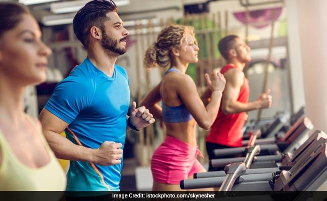 Muscle Building Diet Procedures